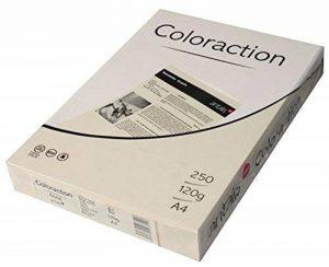 120g/m² A4Coloraction Ramette 500feuilles papier Copieur Imprimante teinté x 250feuilles–Ivoire pâle de la marque Coloraction 120 gsm image 0 produit