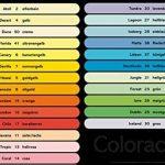 120g/m² A4Coloraction Ramette 500feuilles papier Copieur Imprimante teinté x 250feuilles–Ivoire pâle de la marque Coloraction 120 gsm image 2 produit