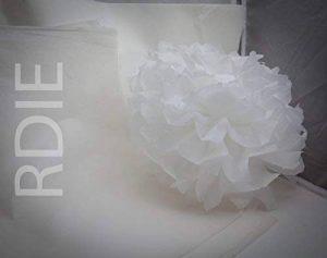 24 feuilles de papier de soie Blanc, format 37 cm x 50 cm, 18 grs de la marque Rdie image 0 produit