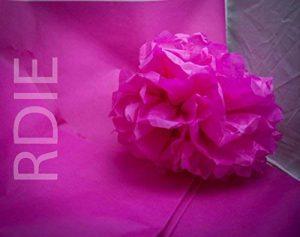48 feuilles de papier de soie Fushia, 50x75cm, 18 grs de la marque Rdie image 0 produit