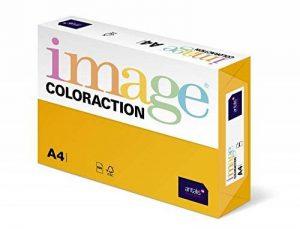 Antalis Coloraction/838A 120S 5 Papier couleur Format A4/120 g/m² Jaune (Import Allemagne) de la marque Antalis image 0 produit