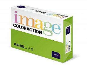 Antalis ColorAction Ramette 500 feuilles papier couleur pour Imprimante jet d'encre/laser/Copieur 80g A4 Java/Vert vif de la marque Antalis image 0 produit