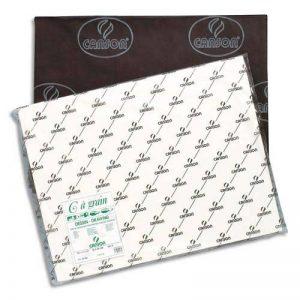 Canson 200021183 C à Grain Feuille de papier dessin 50 x 65 cm 180 g Lot de 50 de la marque Canson image 0 produit