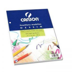 CANSON 39952 Feuillet Mobile A4 210 x 297mm Papier Dessin Grain 100p Perfore Assorties de la marque Canson image 0 produit