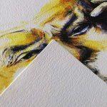 Canson Arts graphiques C à Grain Papier à dessin A4 21 x 29,7 cm 20 feuilles Blanc naturel de la marque Canson image 1 produit