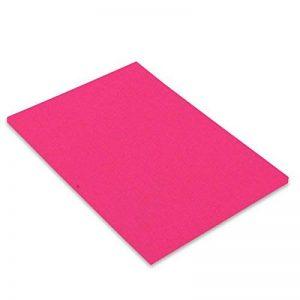 Canson Iris Vivaldi Papier couleur A3 Lisse 250g/m² 29,7 x 42 cm Rose Fluo Lot de 50 de la marque Canson image 0 produit