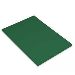 Canson Iris Vivaldi Papier couleur A4 Lisse 185g/m² 21 x 29,7 cm Vert Sapin Lot de 50 de la marque Canson image 0 produit