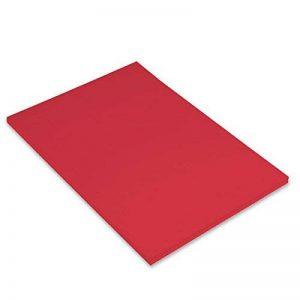 Canson Iris Vivaldi Papier couleur A4 Lisse 240g/m² 21 x 29,7 cm Rouge Lot de 50 de la marque Canson image 0 produit