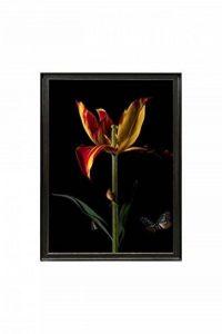 CASA DI BASSI image avec cadre photo bois, multicolore, 70x 50x 6cm de la marque CASA DI BASSI image 0 produit