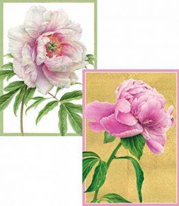 Caspari Blanc Pivoine Blank Cartes avec enveloppes (lot de 8) de la marque Caspari image 0 produit