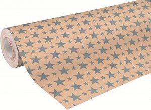 Clairefontaine 223801C Rouleau papier cadeau Kraft brut 70g 50x0,70m Motif Noël étoiles argent de la marque Clairefontaine image 0 produit