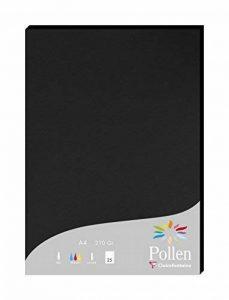 Clairefontaine 24298C Etui 25 feuilles Pollen 21 x 29,7 cm 210g Noir de la marque Clairefontaine image 0 produit