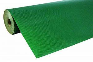 Clairefontaine 507550C Rouleau papier Unicolor kraft brun 60g 50x0,70m Couleur Vert de la marque Clairefontaine image 0 produit