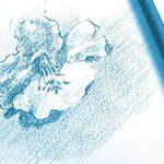 Clairefontaine 96175C - une Pochette de 12 Feuilles de Dessin à Grain Blanc - 180 g - 24x32 cm de la marque Clairefontaine image 1 produit