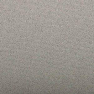 Clairefontaine Ingres pastel couleur papier, gris foncé, 50x 65cm, 130g, Lot de 25 de la marque Clairefontaine image 0 produit