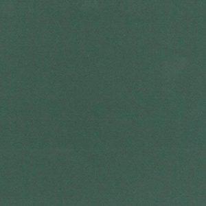Clairefontaine Papier Ingres–Couleur pastel, vert foncé, 50x 65cm, 130g, Lot de 25 de la marque Clairefontaine image 0 produit