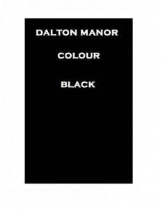 Dalton Manor Lot de 100 feuilles cartonnées A4, noir, a4 de la marque DALTON MANOR image 0 produit