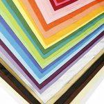 Darice Matrice de papier de soie, 50,8x 66cm, couleurs assorties, Popular, 1 de la marque Darice image 1 produit