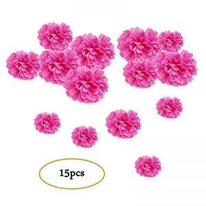 Easy Joy Pompon Papier de Soie Fushia Pompom Decoration Fleur Boule Mariage Suspendu pour Décoration de Maison, Fête, Jardin, Anniversaire - 15pcs (5pcs 15/20/25cm) de la marque Easy Joy image 0 produit