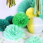 Easy Joy Pompons Papier de Soie Vert Fleur Rosace en Papier Boule Alveolee Vert Menthe Lanterne Chinoise pour Décoration de Baby Shower Fille Garçon Mariage Fête -17pcs de la marque Easy Joy image 2 produit