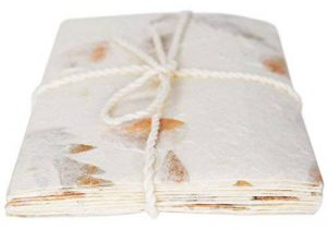 Ensemble d'écriture Enveloppe Eco-petal Dl Standard et Papier Lettre Mélange de Fleurs - Paquet de 6 (22cm x 12cm) de la marque Life Arts image 0 produit