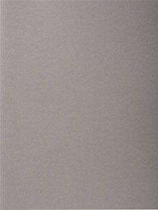 Exacompta 210009E Paquet de 100 Chemises Rock''s en Papier 210g - Gris de la marque Exacompta image 0 produit