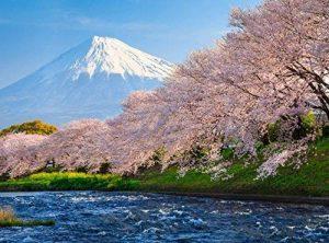 fuji papier photo TOP 10 image 0 produit