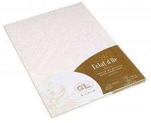 Georges Lalo Papier cartonné A4 Eclats d'or feuilles 250 g 29,70 cm x 21 cm x 0,80 mm Pack de 20 Blanc de la marque Georges Lalo image 0 produit