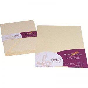 Georges Lalo Papier cartonné Parchemin feuilles A4 120 g 29,70 cm x 21 cm x 0,80 mm Pack de 20 Ivoire de la marque Exacompta image 0 produit