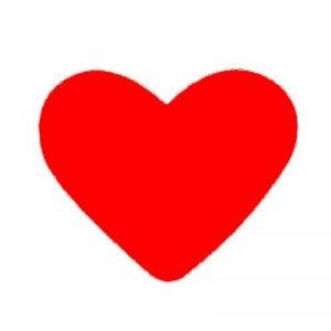 grande perforatrice coeur TOP 10 image 0 produit