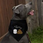 Graphics and More Papier toilette et déjections canines WE Go Together Like Funny emoji amis Chien Bandana – Noir de la marque Graphics and More image 2 produit
