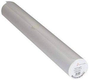 Hahnemuhle - Rouleau de papier calque - transparent - idéal pour dessin haute définition - 45 g/m² - 0,33 x 20 m de la marque Hahnemuhle image 0 produit