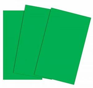 House of Card & papier A2220g/m² Carton coloré–Vert (lot de 50feuilles) de la marque House of Card & Paper image 0 produit