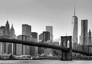 Idealdecor 149 New York Papier Peint Photo 366 x 254 cm de la marque Idealdecor image 0 produit