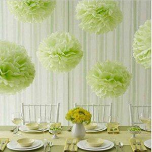 KEEKA Lot de 8. Vert Clair Pompoms Papier fleurs DIY Décoration pour Fête d'Anniversaire Mariage de la marque KEEKA image 0 produit