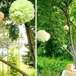 KEEKA Lot de 8. Vert Clair Pompoms Papier fleurs DIY Décoration pour Fête d'Anniversaire Mariage de la marque KEEKA image 2 produit