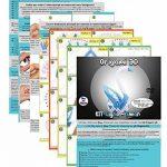 Kit origami 3D Cygne/Swan – 310 pièces carton de 1/32 sur base A4 + DVD tutoriel vidéo dans italien & Anglais – zwischendurch de la marque Ying 3D Origami image 3 produit
