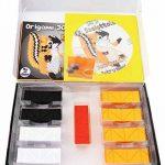 Kit Origami 3d écureuil/Squirrel – 616 de fils de Papier cartonné égal à 1/32 sur base A4 + DVD video-tutorial en italien & anglais – niveau difficile de la marque Ying 3D Origami image 1 produit