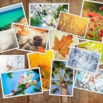 Kodak Zink Photo Paper 50pièce (s) 50x 76mm Film instantané–Film Photo Instantanée (50Pièce (s)) de la marque Kodak image 6 produit