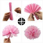 KUNGYO Papier de soie pompons Kit Fleurs lanternes en papier pour fêtes de mariage Décorations 16 PCS de la marque KUNGYO image 4 produit