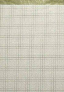 Landre 100050283 Lot de 10 bloc-notes de 50 pages sans couverture Format A4 Papier recyclé, perforé et quadrillé 60 g/m² Modèle : Recycling - Bloc-notes sans page de couverture - Format A5 - 50 feuilles à carreaux de la marque LANDRÉ image 0 produit
