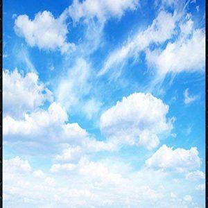 LHDLily Photo Haute Définition Grand Ciel Bleu Et Nuages Blancs 3D 3D Papier Peint Mural Plafond 150Cmx100Cm de la marque LHDLily image 0 produit