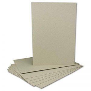 Livre Binder Carton DIN A4–Épaisseur 1,0mm–Grammage: 615g/m²   Format: 29,7x 21cm de la marque Neuser image 0 produit