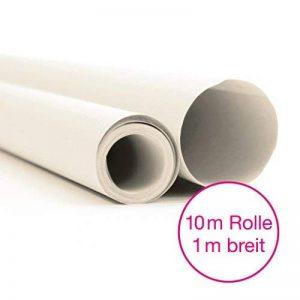 OfficeTree® - Papier de soie - Rouleau de 10 m et de 100 cm de large - Blanc transparent - Découpes professionnelles - Plus de plaisir pour le dessin de loisir - Papier pour découpe et croquis - 20 g/m² - Qualité supérieure (1 rouleau) de la marque Office image 0 produit