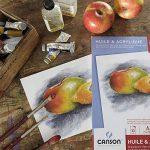 papier canson couleur a3 TOP 6 image 1 produit