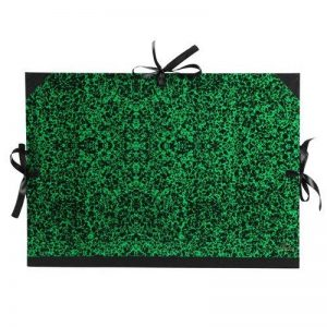 papier canson vert TOP 2 image 0 produit