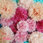 papier de soie fushia TOP 4 image 2 produit
