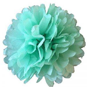 papier de soie vert menthe TOP 2 image 0 produit