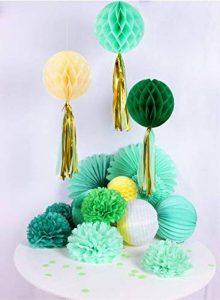 papier de soie vert menthe TOP 8 image 0 produit