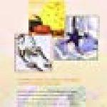 Papier mâché : Déco maison de la marque Colette Rouden image 1 produit